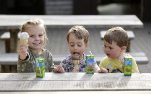 Kids at Fineshade tearoom