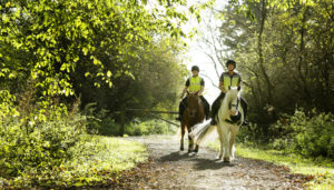 horse riding at fineshade woods
