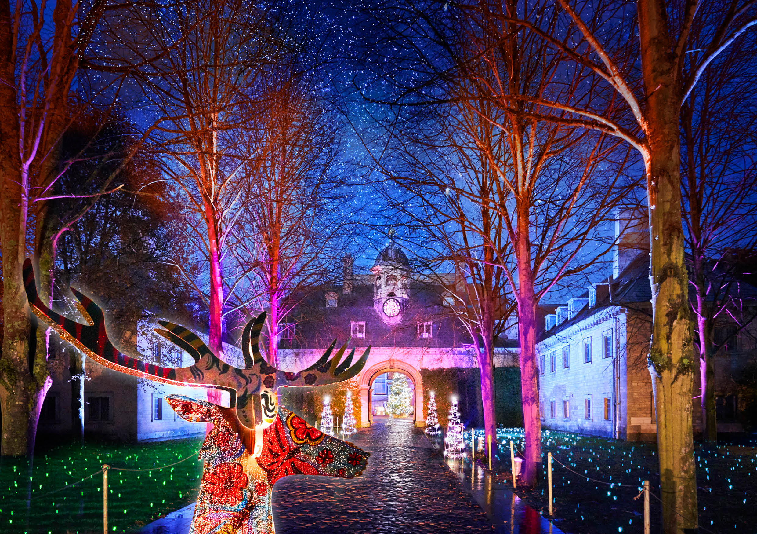 Belton House winter event